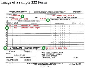 222form Example Of Filled In Dea Form on